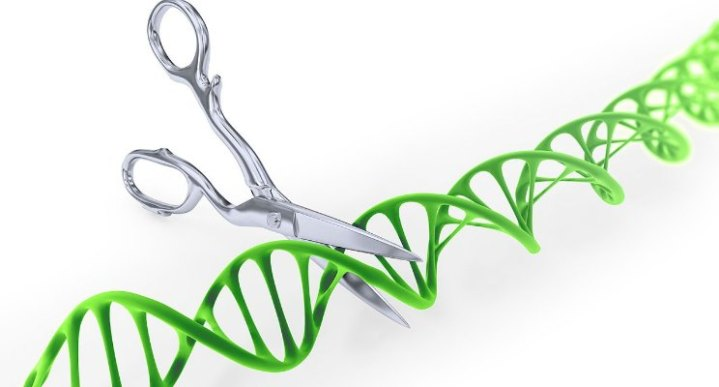 CRISPR: A Game Changing Technology for a More Equitable Future